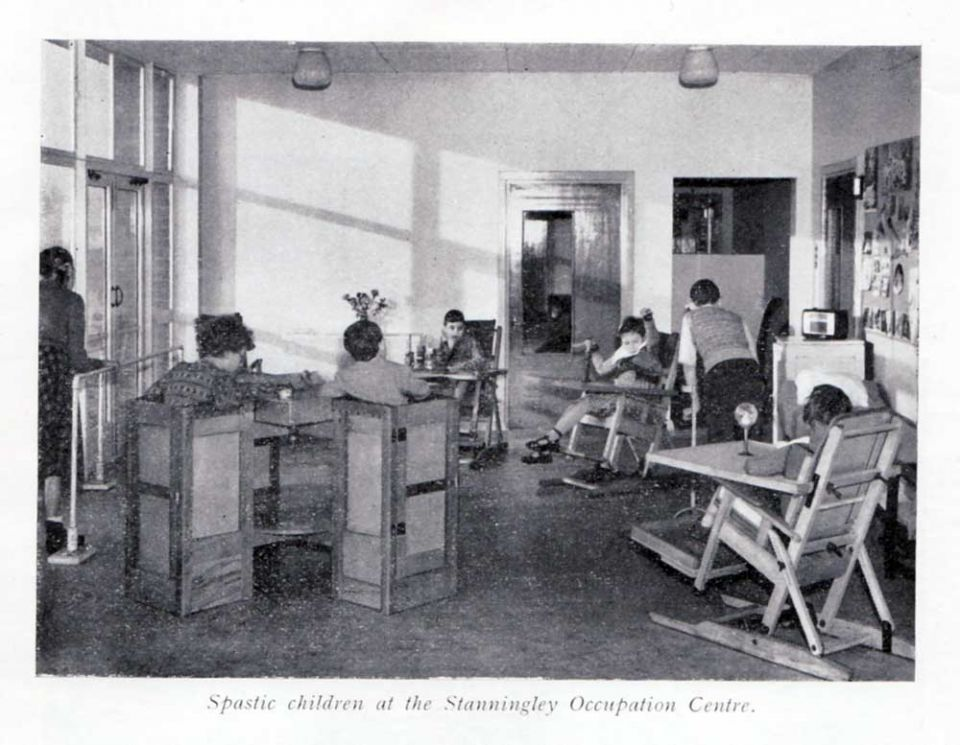 pdf history of institutions for people mental disabilities